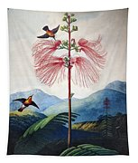Thornton: Sensitive Plant Tapestry
