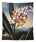 Thornton: Shell Ginger Tapestry