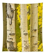 Three Autumn Aspens Tapestry