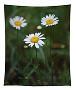 Three Daisy's Tapestry