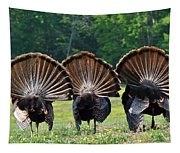 Three Fans Tapestry