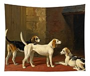 Three Fox Hounds In A Paved Kennel Yard Tapestry