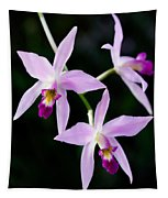 Three Orchids Tapestry