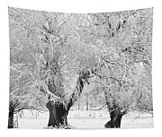 Three Trees In The Snow - Bw Fine Art Photography Print Tapestry