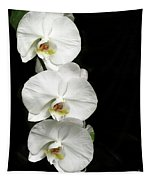 Three White Orchids Tapestry