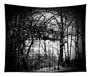 Through The Lens- Black And White Tapestry