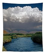 2a6738-thunderhead Over Owens River  Tapestry