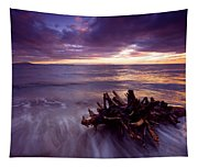Tide Driven Tapestry
