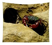 Tide Pool Crab 1 Tapestry