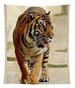 Tiger Pacing Tapestry