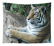 Tiger Portrait Tapestry