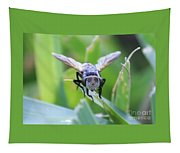 Tiny Fly Tapestry