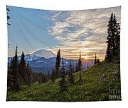 Tipsoo Field Of Summer Tapestry