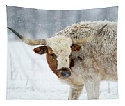 Tired Of Snow Tapestry