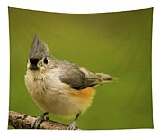 Titmouse Ready To Jump And Fly Tapestry