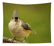 Titmouse Says Here Is Looking At You Tapestry