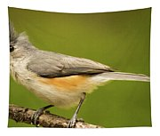 Titmouse With Bad Hairdo 3 Tapestry