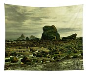 To Walk Alone Along Rocky Shores Tapestry