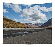 Toklat River Tapestry