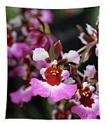Tolumnia Pink Panther Orchid Tapestry