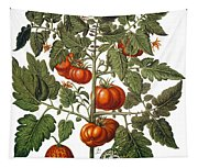 Tomato & Watermelon 1613 Tapestry