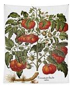 Tomato, 1613 Tapestry