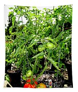 Tomatoes On The Vine Tapestry
