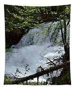 Top Of Clear Creek Falls Tapestry