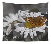 Topsail Butterfly Tapestry