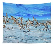 Topsail Skimmers Tapestry