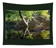 Touch Of Silence Tapestry