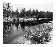 Touch Of Winter Black And White Tapestry