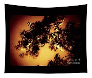 Towering Trees In The Twilight Tapestry