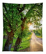 Trail Into Sunset Tapestry