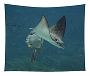 Tranquil Sea Creatures Tapestry