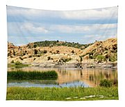 Tranquil Willow Lake Tapestry