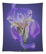Translucent Iris Tapestry