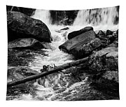 Trap Falls In Ashby Ma Black And White 9 Tapestry