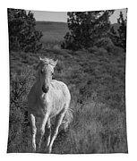 Traveler Bw Tapestry