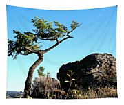 Tree And Rock Tapestry