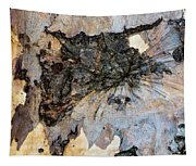 Tree Barks Pattern #13 Tapestry
