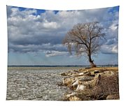 Tree By Water Tapestry