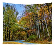 Tree Lined Road Tapestry