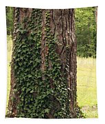 Tree Of Ivy Tapestry