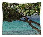 Tree Over Sapphire Beach Tapestry