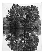 Tree Reflection In Black And White Tapestry