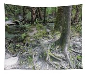 Tree Roots And Lithia Springs Tapestry