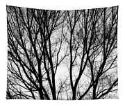 Tree Silhouettes In Black And White Tapestry