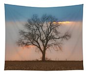 Tree - Sunset Tapestry