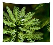 Tree Top Dew Drop Tapestry